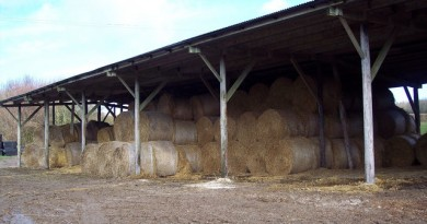 how-much-does-a-pole-barn-cost
