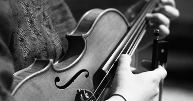 how-much-does-a-violin-cost